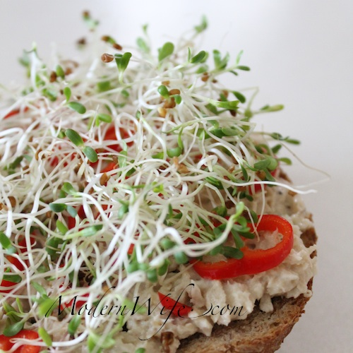 Alfalfa Sprouts and Sweet Peppers on Tuna Sandwich